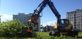 Bomen gekapt op het Europaplein